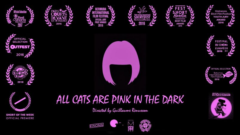 All cats are pink in the dark